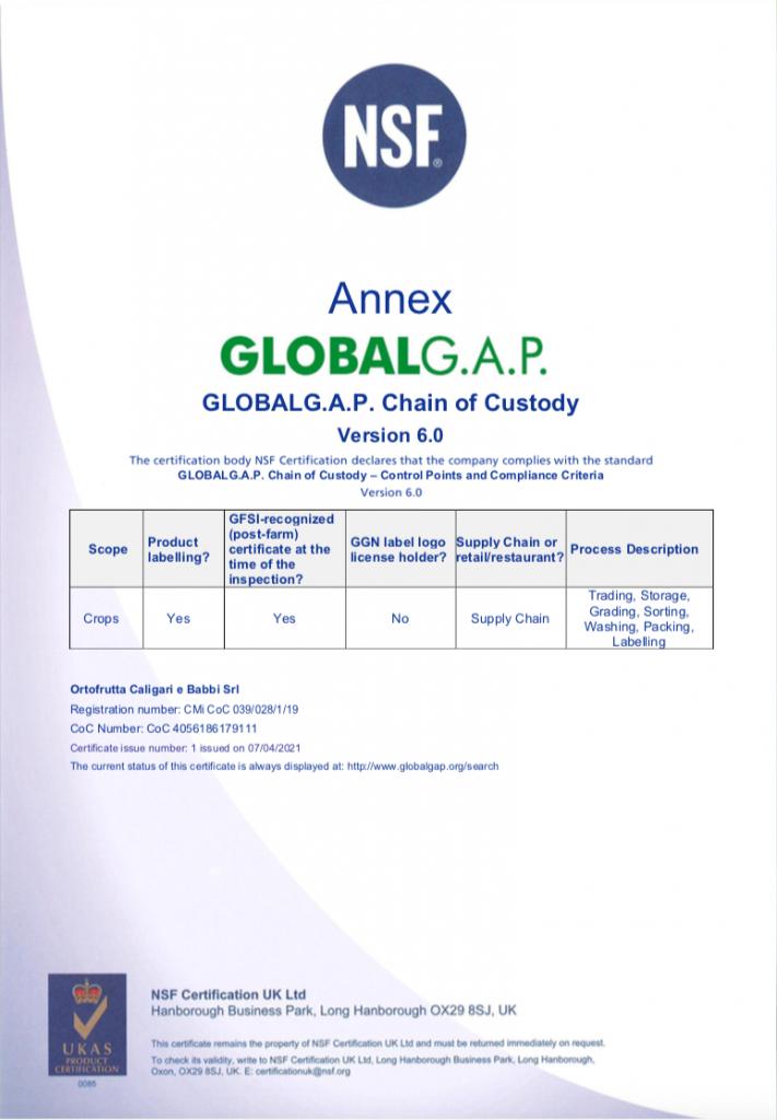 039.028 Single site GLOBALGAP CoC Certificate V6.0 2021_02